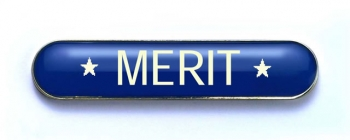 Tube Enamel Badge 'MERIT' Blue (Pk. 5)